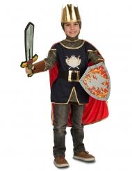 Kostume ridder med tilbehør til drenge