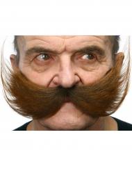 Moustache stort brunt