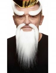 Kit skæg kinesisk hvidt til voksne