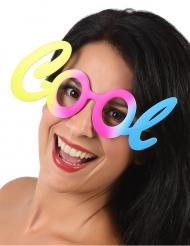 Cool briller til voksne