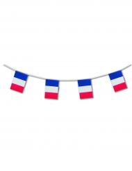 Guirlande med det franske flag