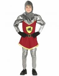 Kostume drage ridder til drenge