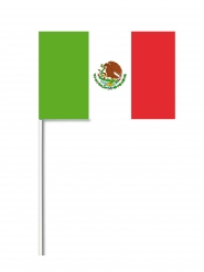 Mexicansk flag 14x21 cm