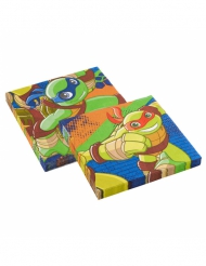 Ninja Turtles™ servietter 20 stk