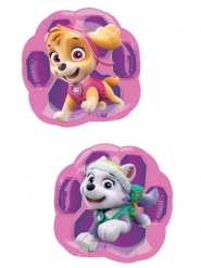 Stella og Everest Paw Patrol™ ballon