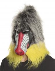 Bavian latex maske - voksen