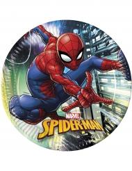 Spiderman™ paptallerkerner 8 stk