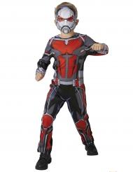 Klassisk Ant Man™ kostume til dregne