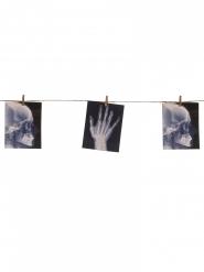Halloween guirlande- Røntgenbilleder 160x16 cm