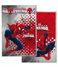 Spiderman™ gaveposer 20x30 cm