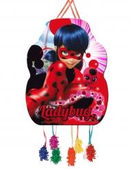 Ladybug™ piñata 46 cm