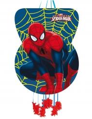 Spiderman™ piñata 46x65 cm