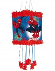 Spiderman piñata 20x30 cm