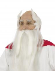 Miraculix paryk og skæg - Asterix og Obelix™