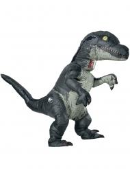 Velociraptor Jurassic World™ Kostume til voksne