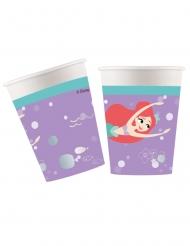 8 stk premium papkrus med Ariel™ 260 ml