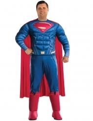 Superman Justice League™ kostume voksen stor størrelse