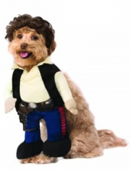 Han Solo Star Wars™ kostume til hund