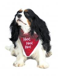 Bandana til hund rød