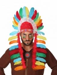 Indianer hat høvding voksen