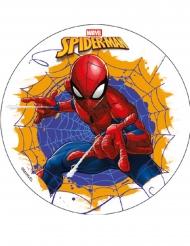 Kagedekoration med Spiderman™ 18.5 cm