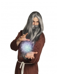 Paryk og skæg grå magiker mand.