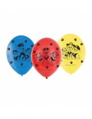 6 latex balloner med Paw Patrol™ 23 cm