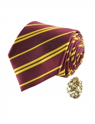 Gryffindor Harry Potter™ Slips med pins