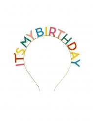 Its My Birthday hårbøjle voksen