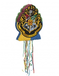 Harry Potter™ pinata 50 x 43 cm