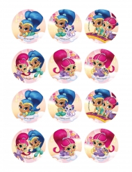 12 Sukker småkage dekorationer Shimmer and Shine™ 6 cm