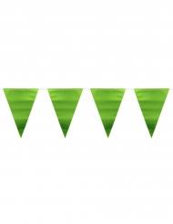 Guirlande med metalgrønne vimpler 6 m