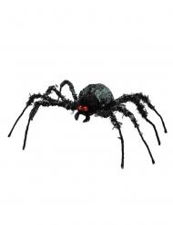 Kæmpe Edderkop 43 x 46 cm