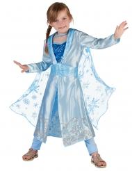 Blå vinter prinsess kostume