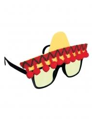 Fiesta briller
