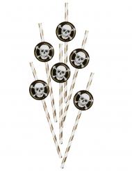 6 Sugerør i karton Pirate Jolly Roger 24 cm