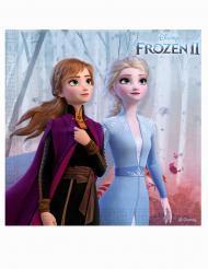 20 Servietter Frost 2™ 33 x 33 cm
