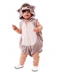 Vaskebjørn kostume baby