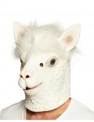 Lama helmaske hvid - voksen