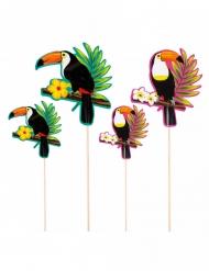 4 træpinde med tukaner 25 - 17,5 cm