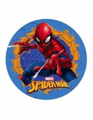 Spiselig kagedekoration Spiderman™ 20 cm