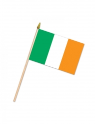 Irlandsk flag 10 x 15 cm