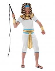 Egyptisk konge kostume - teenager