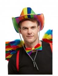Stetson regnbue hat - voksen