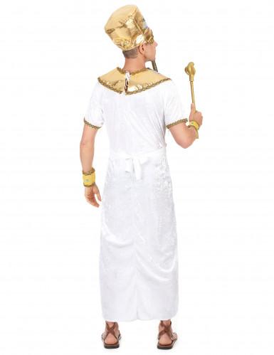 Egyptisk kongedragt Mænd-2