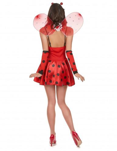 Kostume mariehøne sexet til kvinder-2
