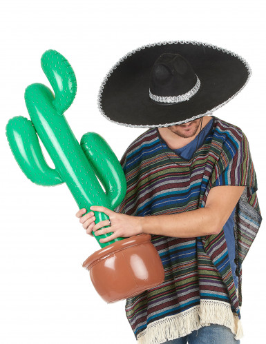 Oppustelig Kaktus-1