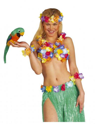 Tropisk papegøge-1