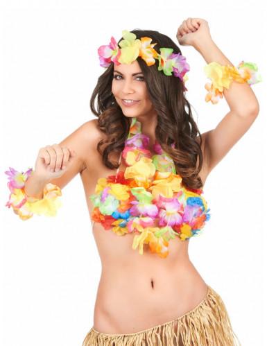Hawaii sæt-1