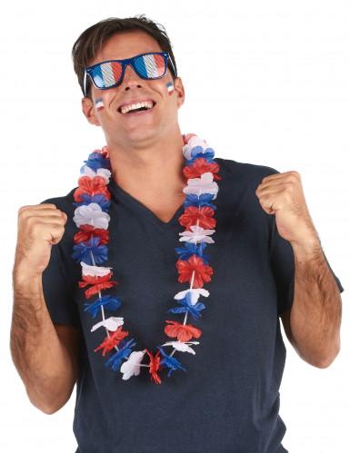 Trefarvet Hawaii Supporter Halskæde-1